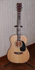 奇特なフォークギター
