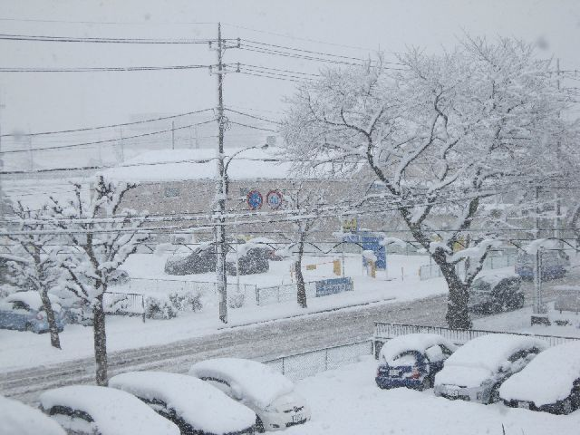 車も埋もれるうれし楽し大雪