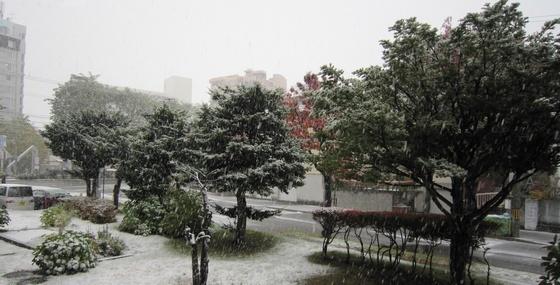 もう初雪です