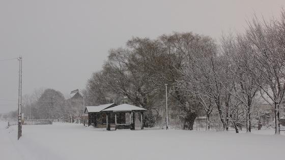 北海道の吹雪